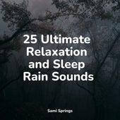 25 Ultimate Relaxation and Sleep Rain Sounds de Zen Meditate