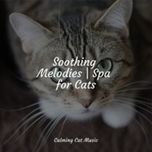 Soothing Melodies | Spa for Cats by Cat Music