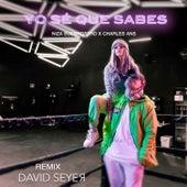 Yo Sé Que Sabes (Remix) by Niza Buenrostro