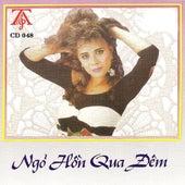 Ngo Hon Qua Dem de Various Artists
