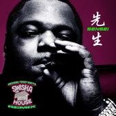 Sensei (Swisha House Remix) by Big Pokey