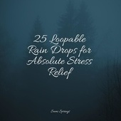25 Loopable Rain Drops for Absolute Stress Relief de Best Relaxing SPA Music