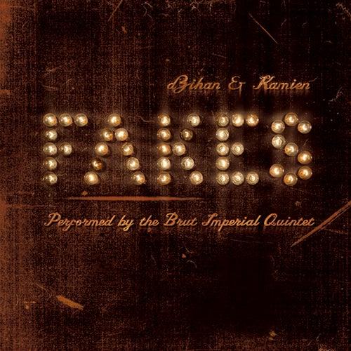 Fakes by Dzihan & Kamien