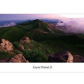 Layer Forest 2 by Various Artists