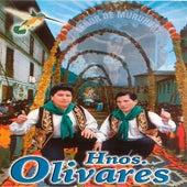 Hermanos Olivares by Hermanos Olivares