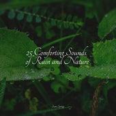25 Comforting Sounds of Rain and Nature de Deep Sleep Meditation