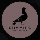 Pidgeons (Fka Mash Glitch Dub) by Stimming