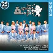 Íconos 25 Éxitos de Los Angeles Azules