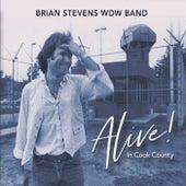 Alive! In Cook County (Live) de Brian Stevens