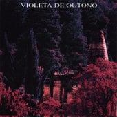 Raridade Plug de Violeta De Outono