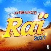 Ambiance raï 2017 de Various Artists