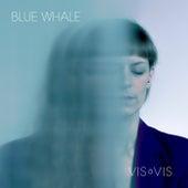 Blue Whale by Vis à Vis