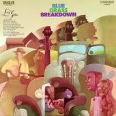 Blue Grass Breakdown by Living Guitars