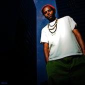 Bright Side (Remix) de Damu The Fudgemunk