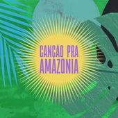 Canção pra Amazônia de Canção pra Amazônia