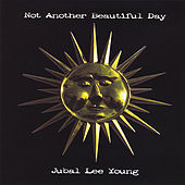 Not Another Beautiful Day by Jubal Lee Young