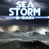 Sea Storm & Rain by Weather Storms