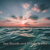 Sea Sounds and Ocean Waves by Ocean Sounds (1)