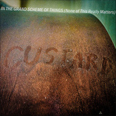 In the Grand Scheme of Things (None of This Really Matters) by Custard