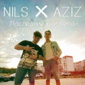 Последние дни лета by Nils