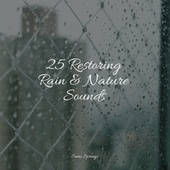 25 Restoring Rain & Nature Sounds by Best Relaxing SPA Music