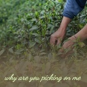 Why Are You Picking on Me by Various Artists