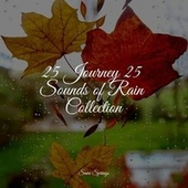 25 Journey 25 Sounds of Rain Collection by Massage Therapy Music