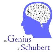 The Genius of Schubert by Various Artists