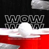 WOW WOW (Pa Romper La Discoteca) (Remix) de Damian Escudero DJ