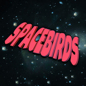 Spacebirds by The Spacebirds