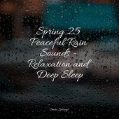 Spring 25 Peaceful Rain Sounds - Relaxation and Deep Sleep de Massage Tribe