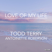 Love of My Life by Todd Terry