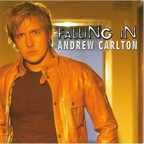 Falling In by Andrew Carlton