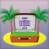 Valise by Raven