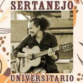 Sertanejo Universitario by Various Artists