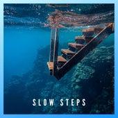 Slow Steps by Sergy el Som
