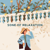 Zone of Relaxation – Music for Spa, Sleep and Relax de Soothing Sounds