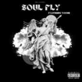 Soul Fly by Dee Gomes