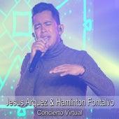 Concierto Virtual (En Vivo) von Jesus Arquez