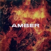 Amber by Amber