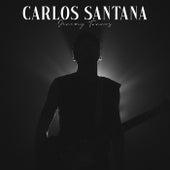 Carlos Santana by Jeremy Torres