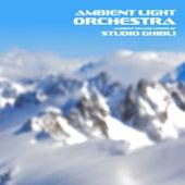 Ambient Translations of Studio Ghibli de Ambient Light Orchestra