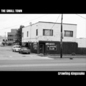 Crawling King Snake by SmallTown
