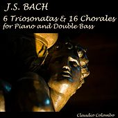 J. S. Bach : 6 Triosonatas & 16 Chorales for Piano and Double Bass by Claudio Colombo