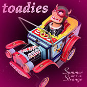 Summer of the Strange de Toadies