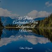 25 Pistas Ambientales Para Relajarse Al Máximo by Musica Relajante