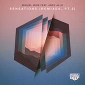Sensations (feat. Andy Allo) (Remixes, Pt. 2) by Miguel Migs