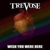 Wish You Were Here (Cover) di Trevose