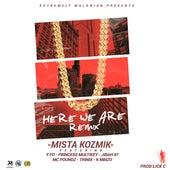 Here We Are (Remix) de Mista Kozmik