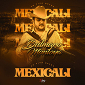 En Vivo Desde Mexicali by Bulmaro Montoya